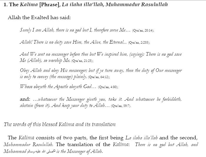 Essay In Urdu Language Mehnat Ki Azmat  Essay Thesis also Modest Proposal Essay Examples  Barack Obama Essay Paper
