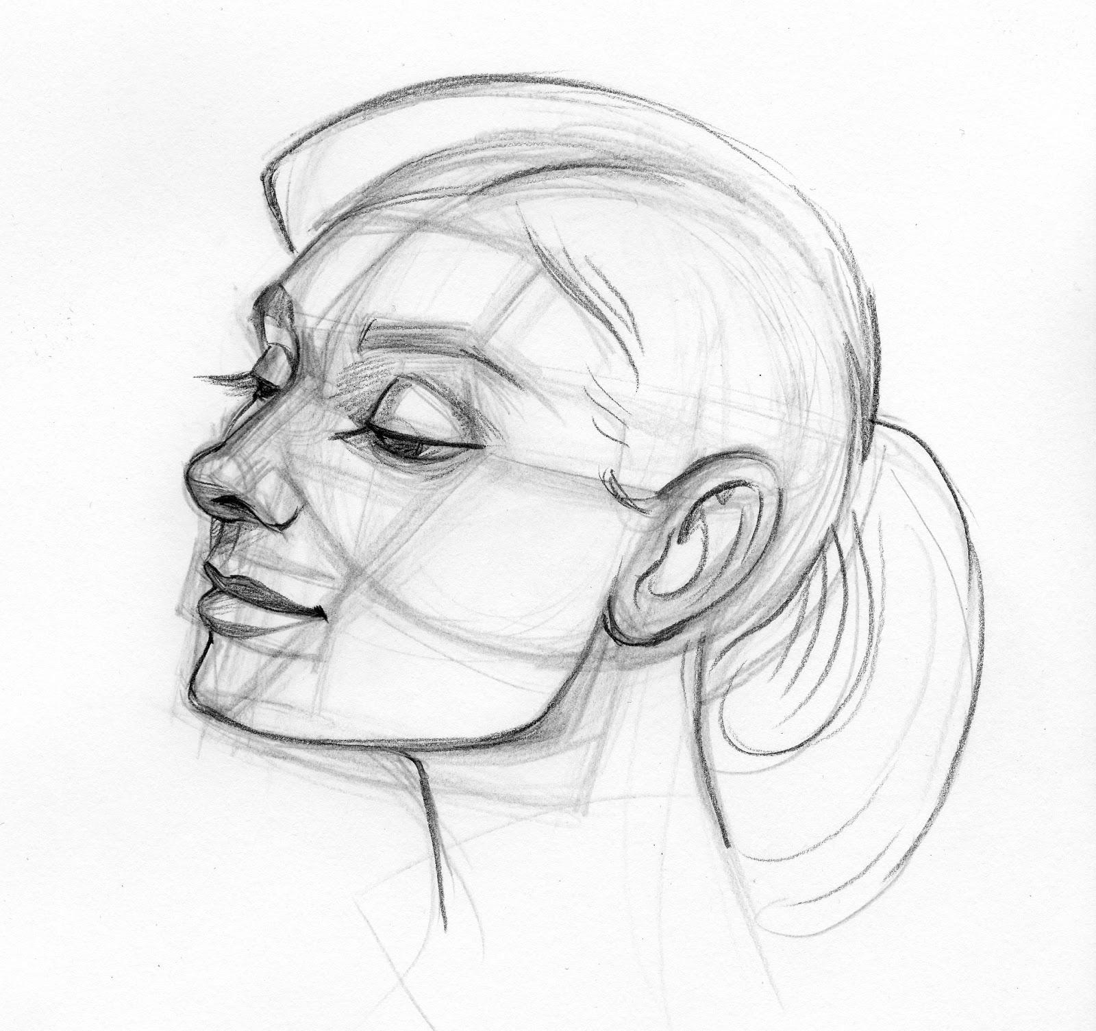 Tina Nawrocki - Art and Animation: Studio Technique - Facial Anatomy ...