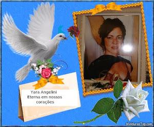 Yara Angelini