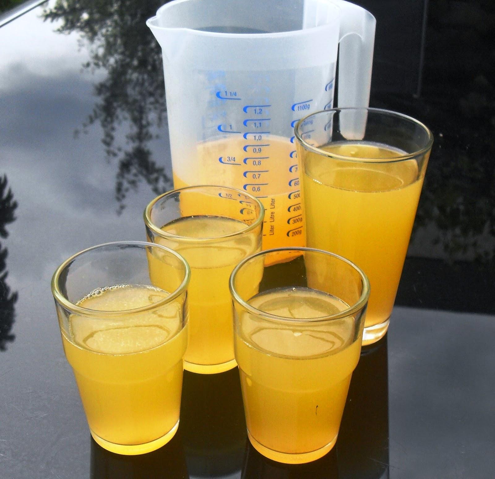 Sanna´s Hexenküche: Isotonisches Getränk