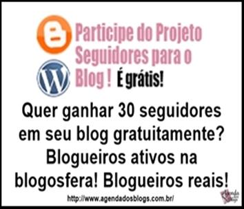 Ganhe seguidores no blog!
