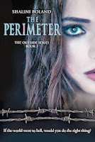 http://darlenesbooknook.blogspot.ca/2013/11/the-perimeter-book-blitz-author.html