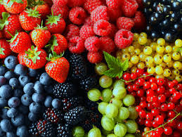 Diet Dengan Makanan Rendah Kalori