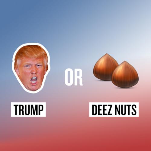 Trump vs Deez Nuts ok the daily blubb donald trump meme (donald trump memes, donald
