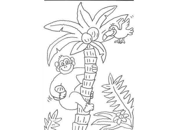 Blog MegaDiverso: Libro de la selva para imprimir y colorear