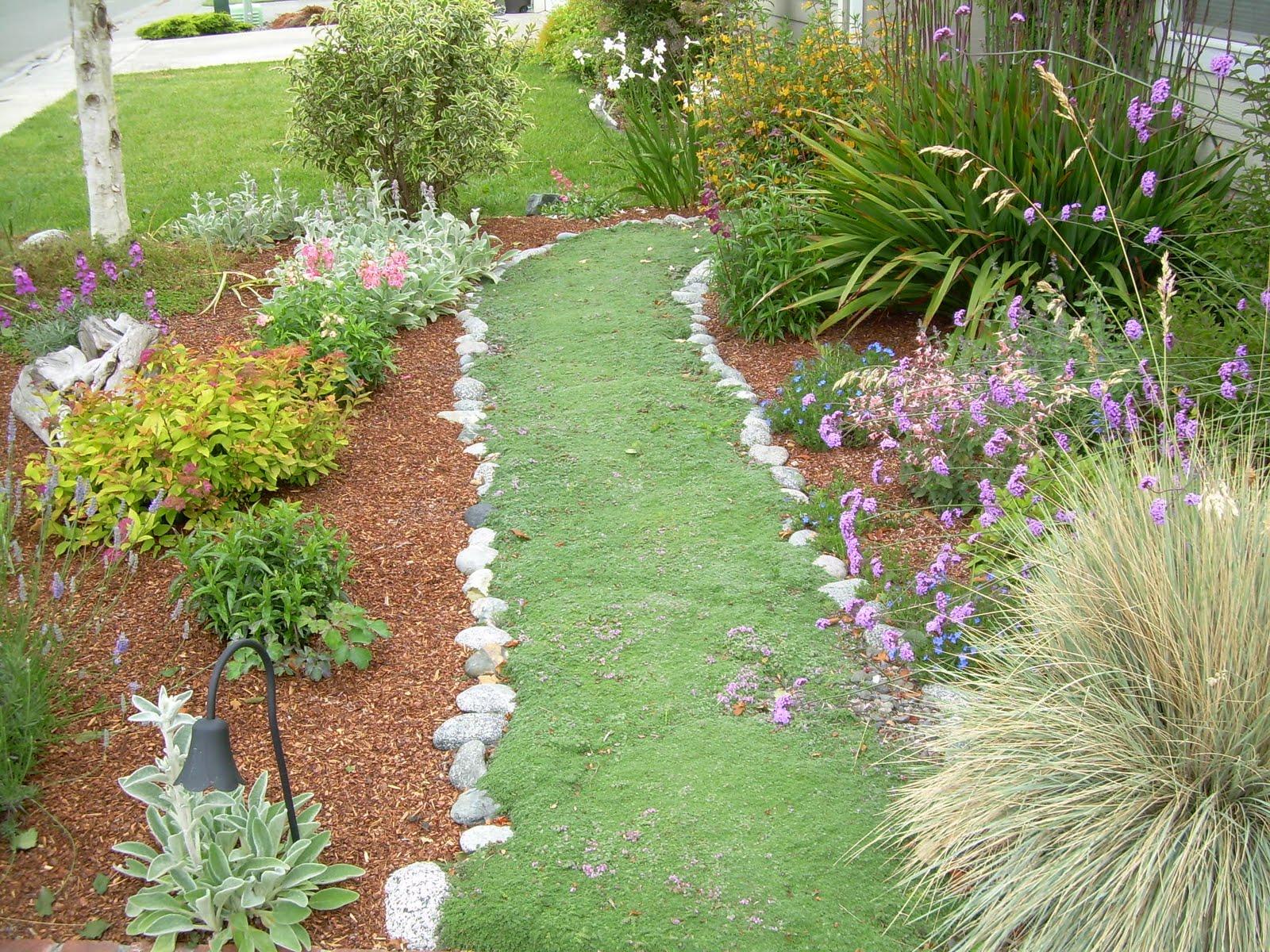Garden words garden visions a different garden path for Garden path