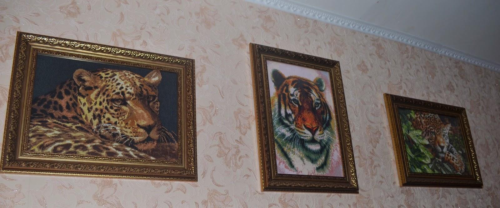 схема дименсионс леопард