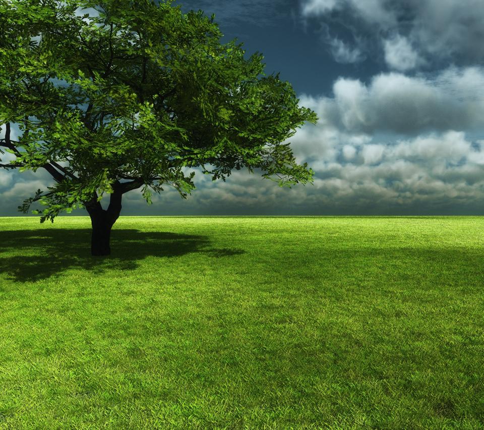 free beautiful nature green - photo #2
