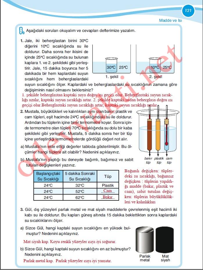 Sınıf fen ve teknoloji çalışma kitabı meb yayınları sayfa