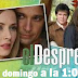 """""""El Desprecio"""" estrena en Univisión Puerto Rico"""