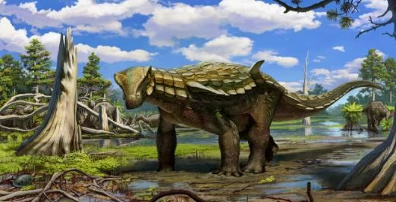 New armoured dinosaur species found in Spain