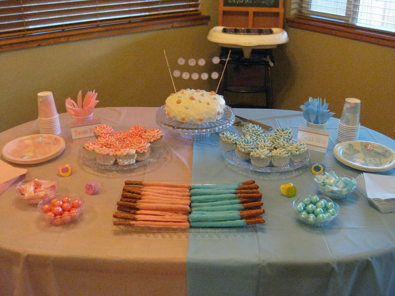 Decorable Designs Blue vs Pink Our Gender Reveal