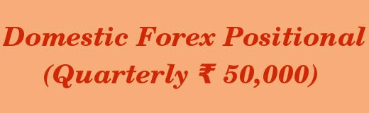 Domestic Forex Positional