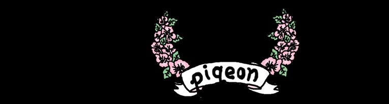 pigeon's art