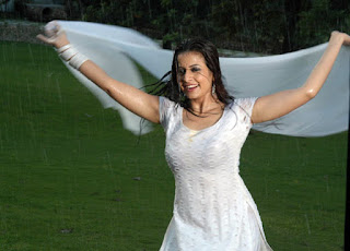Koel dancing in rain