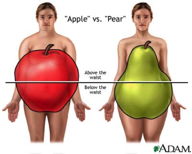 how to tell your body shape when overweight