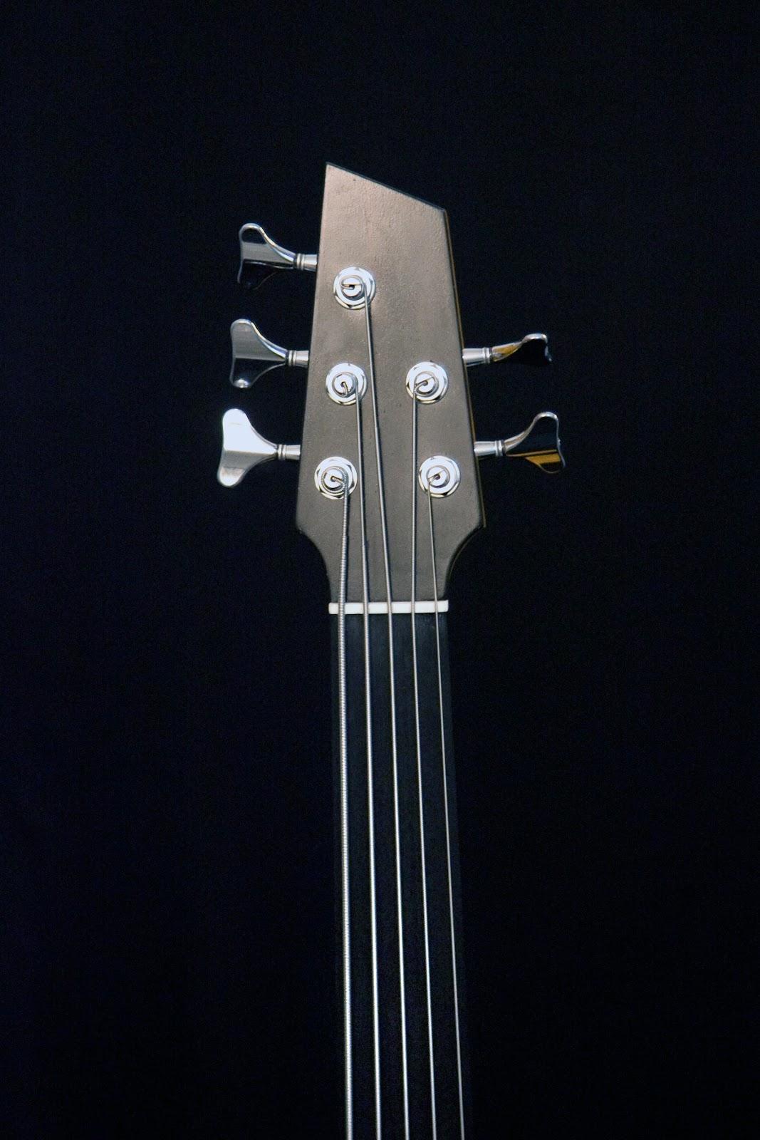 http://1.bp.blogspot.com/--wAwwVnp3Ek/S6pDbuEPxWI/AAAAAAAAp-g/SAkUyQN2cKU/s1600/Five+string+electro-acoustic+bass%252C+Ebony+headstock+and+Ebony+fingerboard%252C+bone+nut.JPG