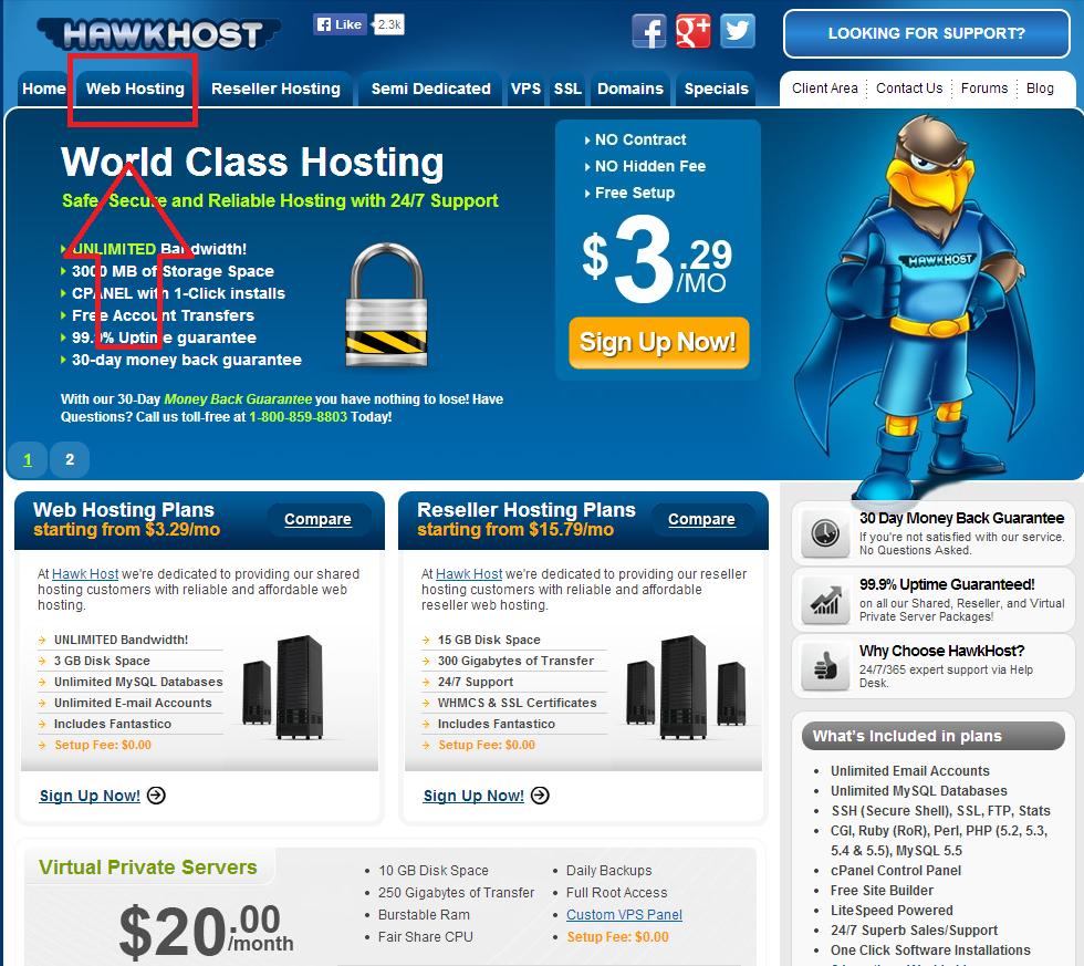 Hướng dẫn chi tiết cách đăng ký hosting tại HawkHost