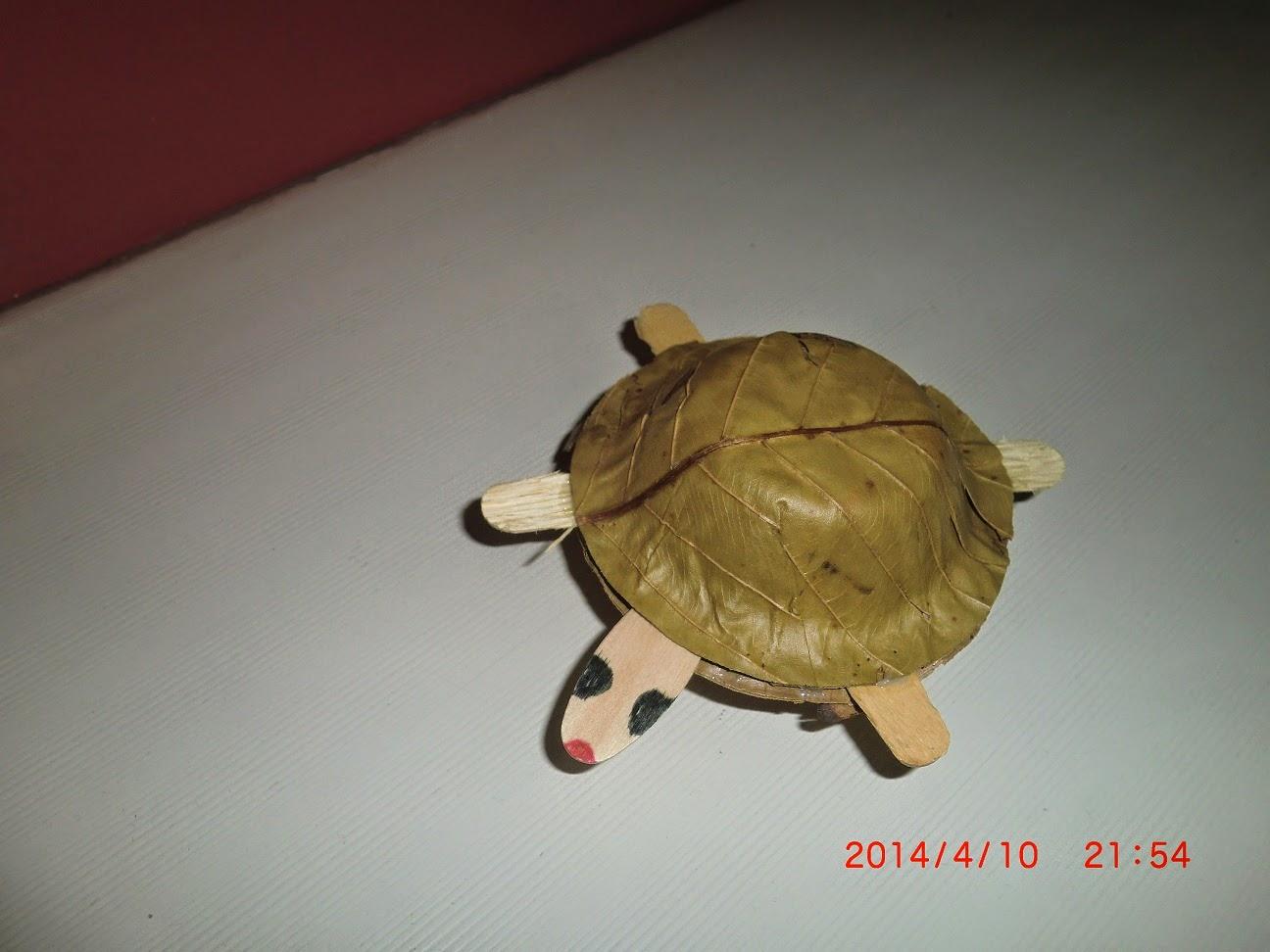 Sal-leaf Tortoise Craft