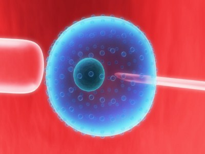 Artificial insemination cost philippines