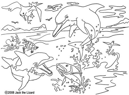 dolphin coloring pages free for kids disney coloring pages