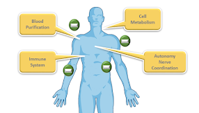 Tác dụng của ion âm tới cuộc sống và sức khỏe con người