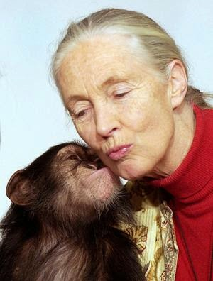 http://es.wikipedia.org/wiki/Jane_Goodall