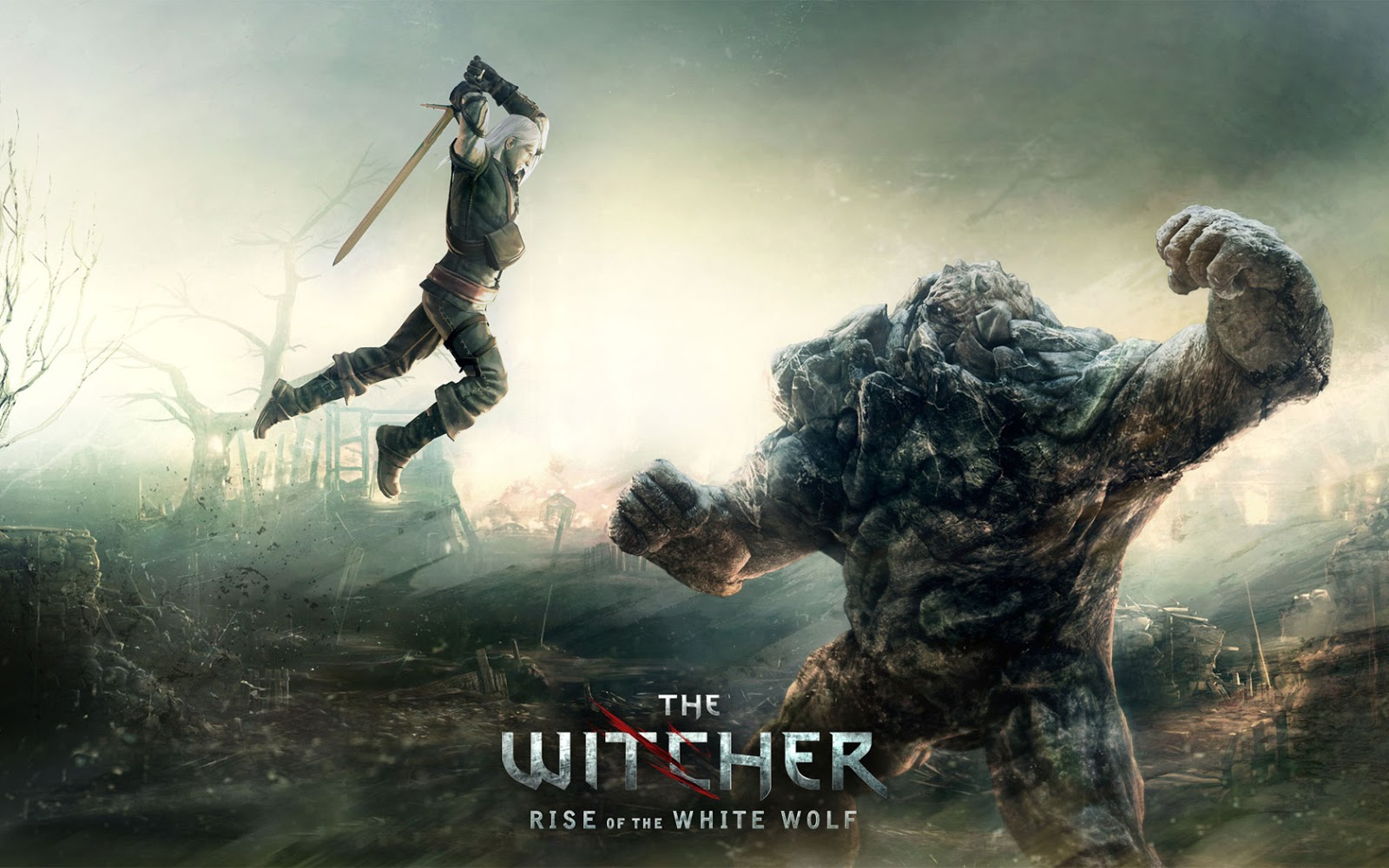 The Witcher 2 Assassins Of Kings Fully PC Game Download