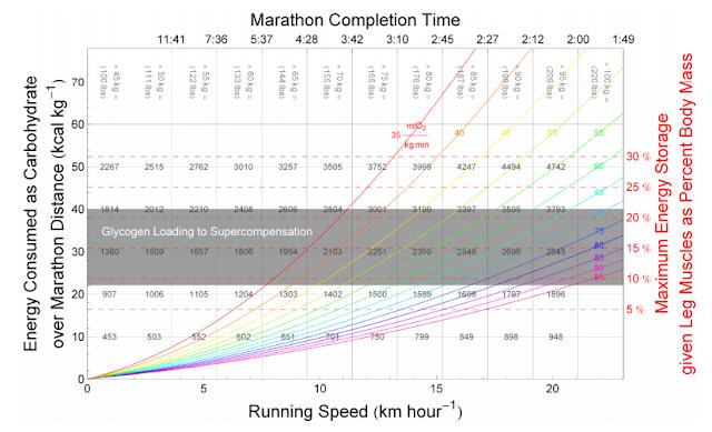 カーボローディング:ランニングスピードに対する炭水化物の消費モデル