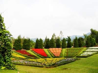 taman bunga nusantara taman bunga berbentuk satwa bunga khas belanda