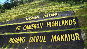 Cameron Highland Tour Package
