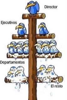 Jerarquerización en el diseño organizacional