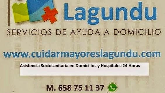 Servicio Domestico Bergara CuidarMayoresLagundu.com