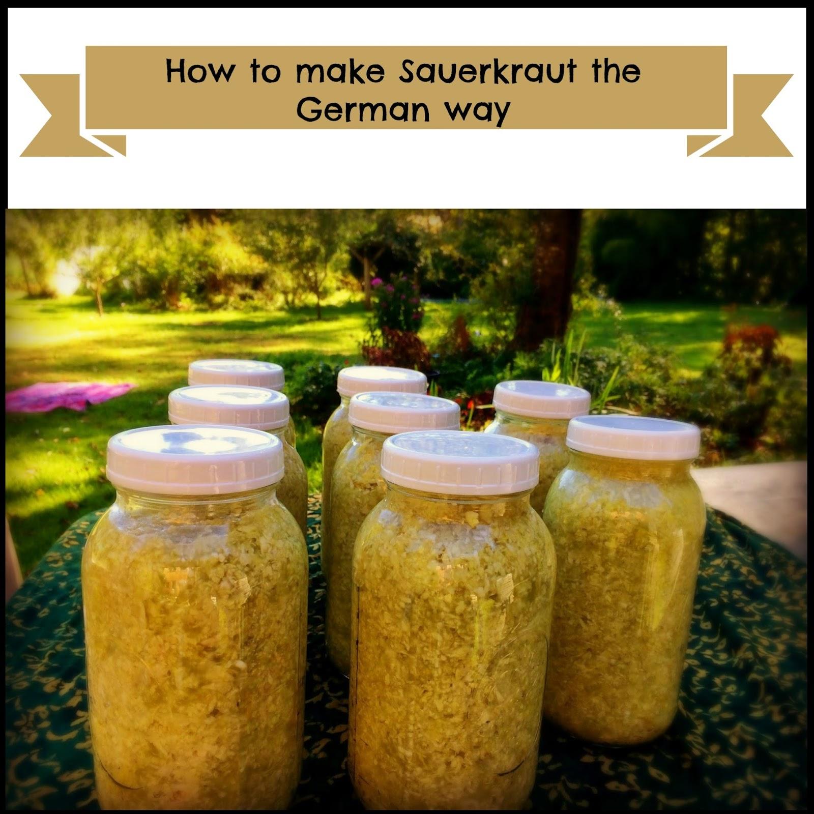 How to make sauerkraut at home 48