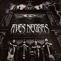 """DESCARGA LOS TEMAS DEL EP 2010 """"AVES NEGRAS"""" ACA"""