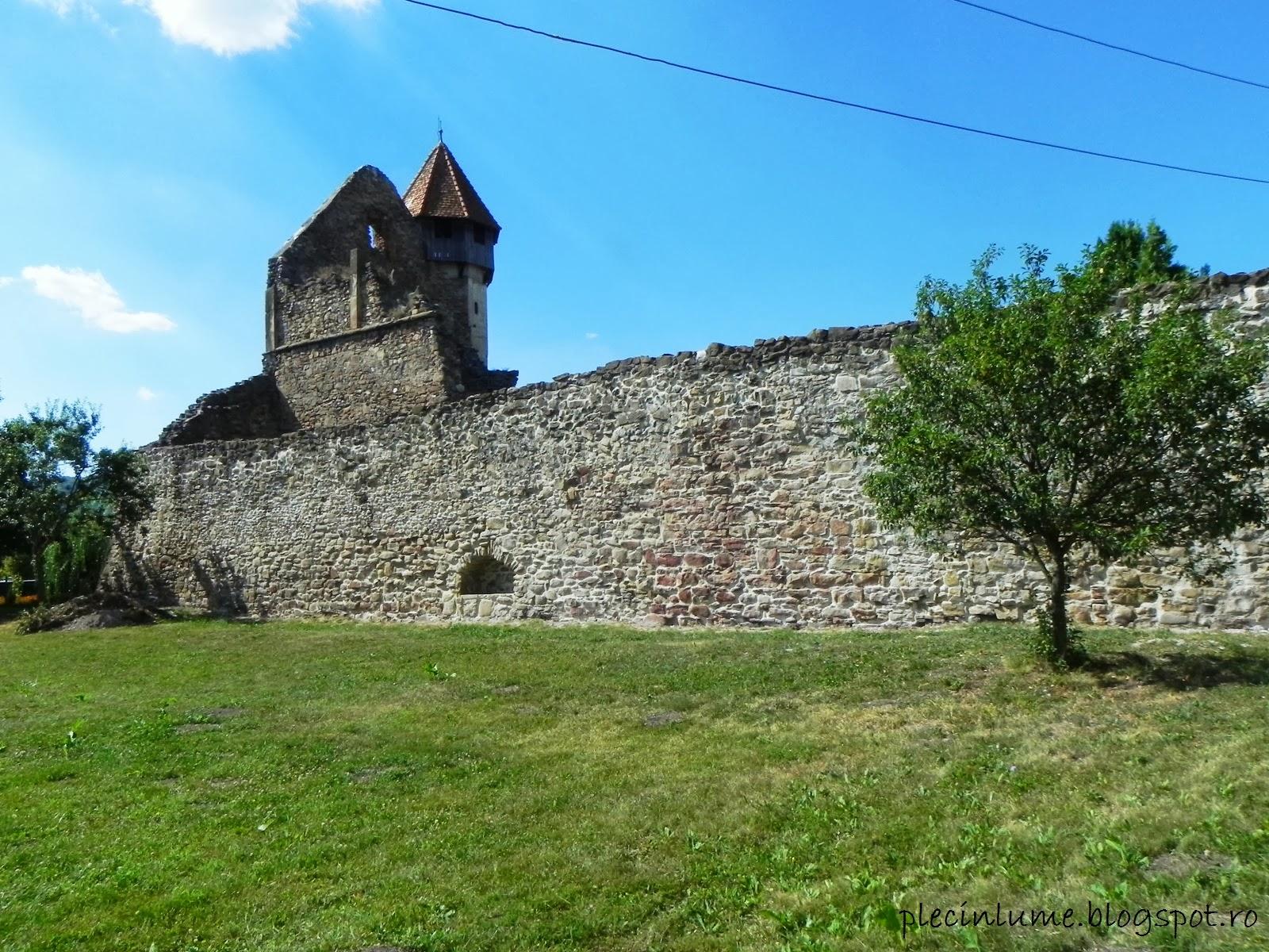 Manastirea cisterciana din Carta