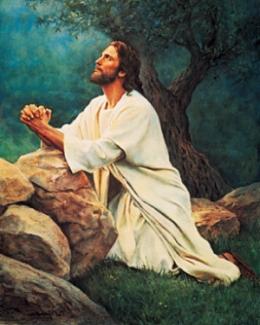 Evangelizar Hoy Una Hora Contigo