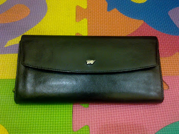 Braun Buffel Black Leather Purse(SOLD)