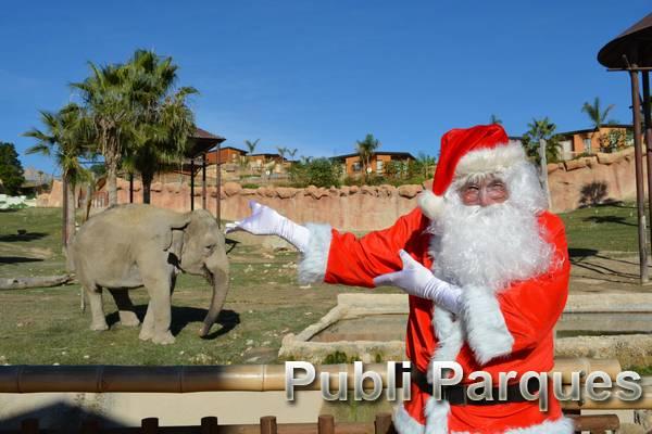 Papa Noel de Terra Natura Benidorm