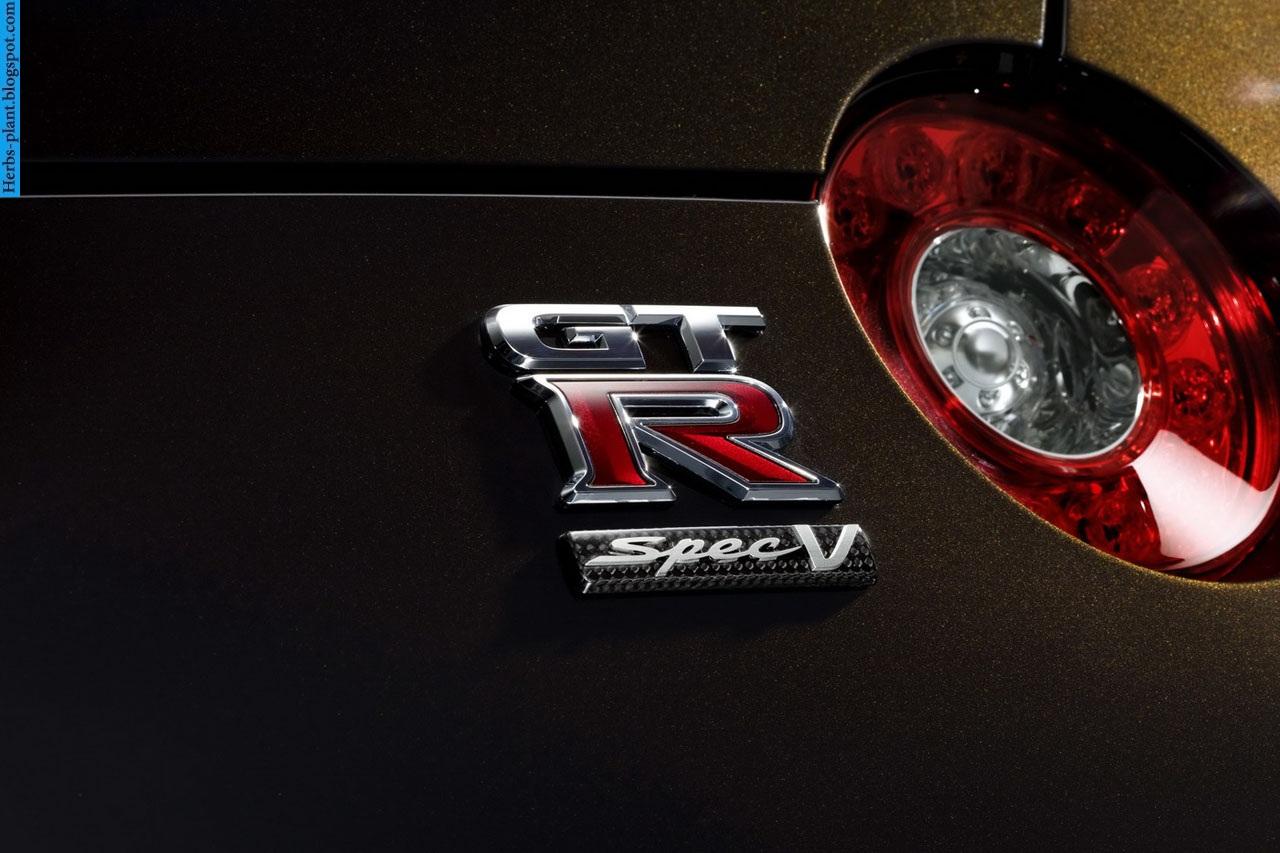 Nissan GT-R car 2013 logo - صور شعار سيارة نيسان جي تي ار 2013