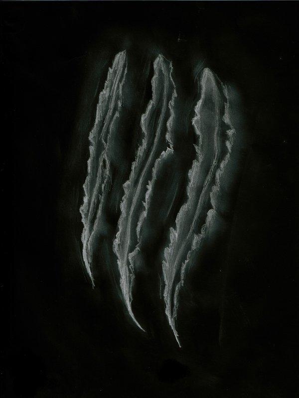 Werewolf claw marks - photo#1
