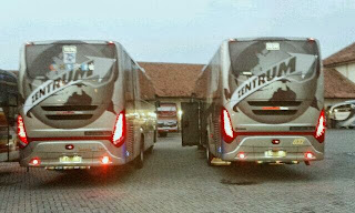 Scorpion King PO Trans Zentrum