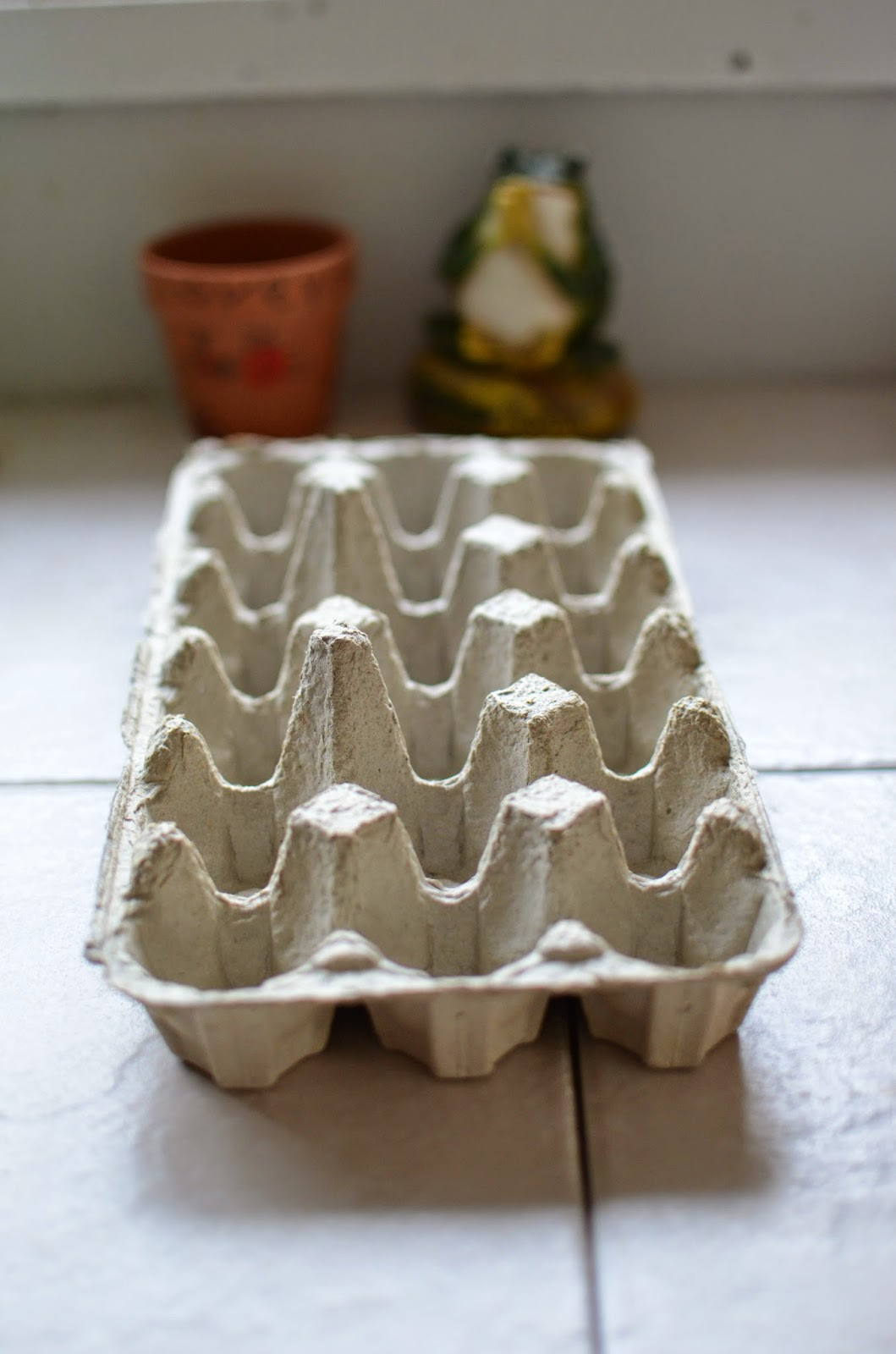 Mindful Musings Create Your Own Egg Carton Greenhouse
