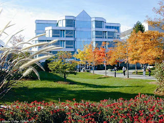 International Student Scholarships at Humber College Canada