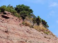 Restes de murs del Castell Sameda al Puig dels Jueus