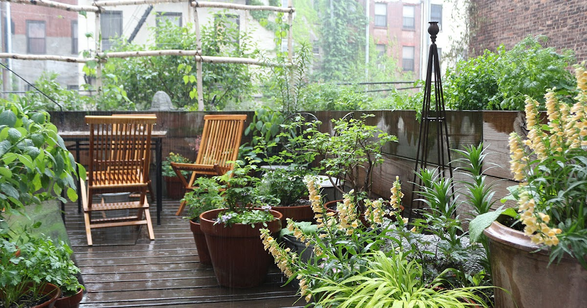 66 square feet plus sunday in rainy harlem with for Terrace on the green