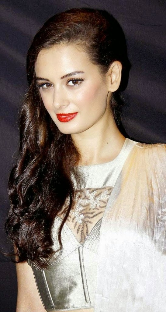 evelyn sharma hot photo in saree