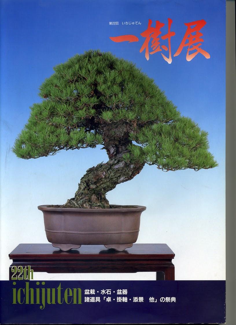 El tim bonsai la biblioteca de el tim iv - Libros de bonsais ...