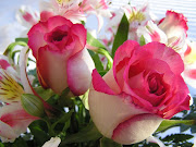 Mildely pink and white roses are best gift for girlfriend expressing .