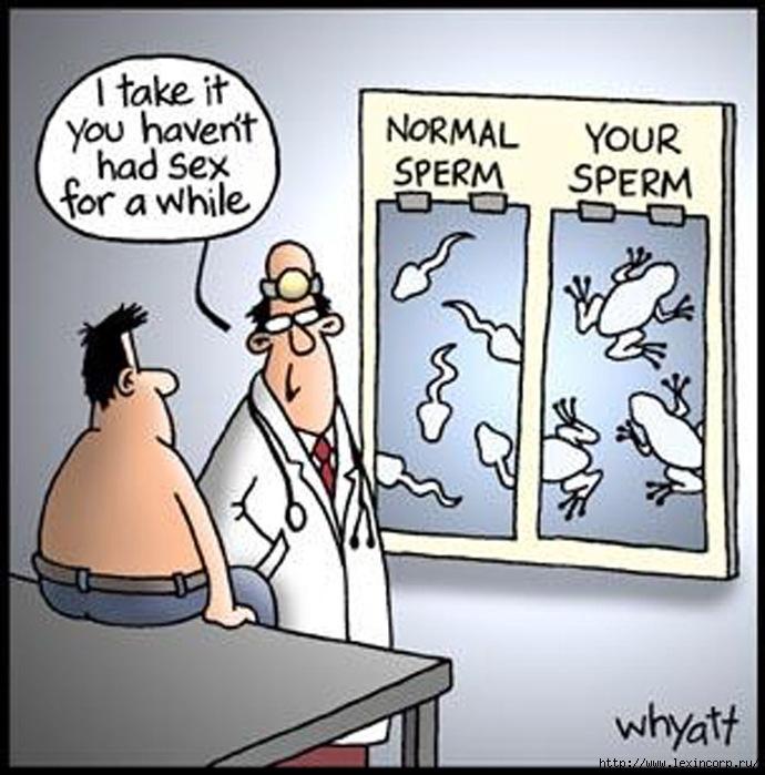 vse-o-spermotaksikoz